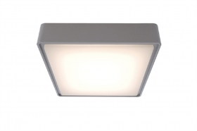 Ceiling light ceiling lamp led