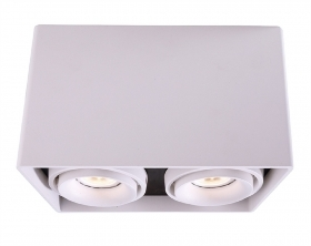 Ceiling light ceiling lamp dou